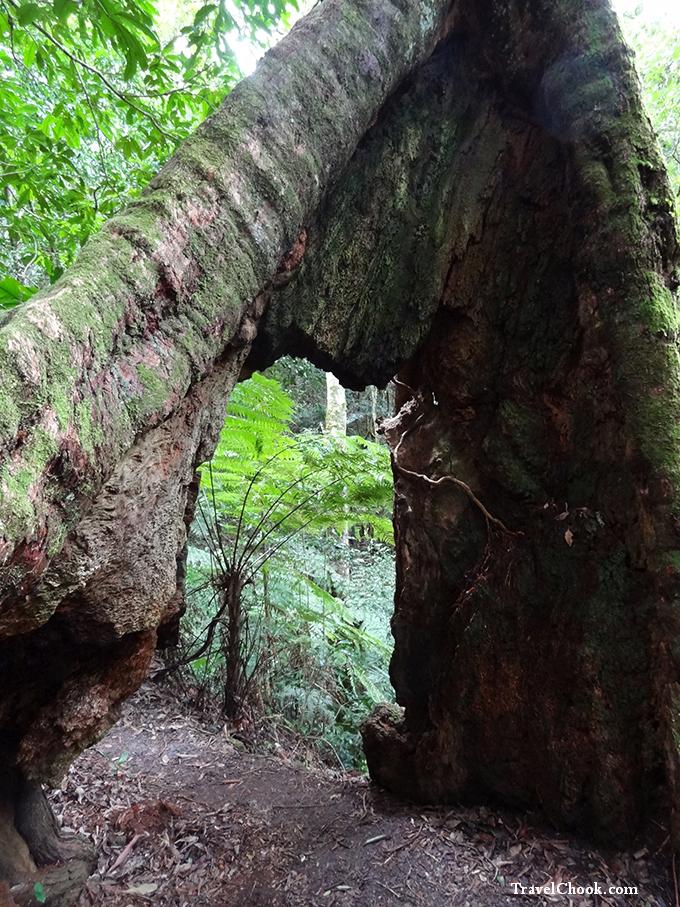 Hinterland-short-walks