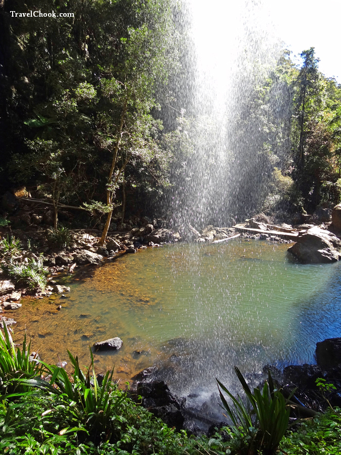 Twin Falls Circuit, Springbrook