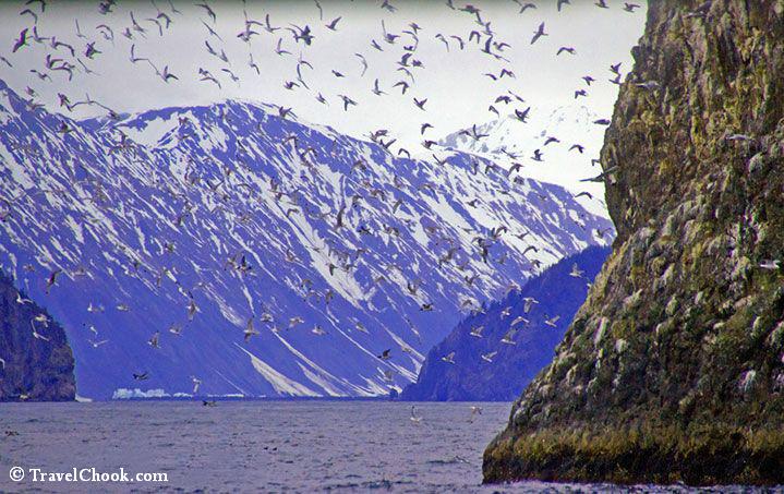 kenai-fjords-alaska